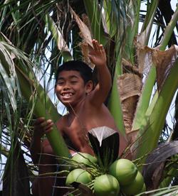 Sairee Hutin juoksupoika hakemassa kookosta.